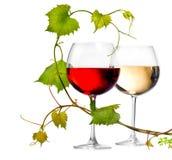 Twee glazen rode en witte wijn Royalty-vrije Stock Afbeeldingen