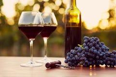 Twee glazen rode wijn Stock Afbeeldingen