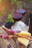 Twee glazen rode wijn met brood, vlees, druif en kaas Royalty-vrije Stock Fotografie