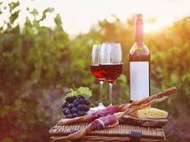 Twee glazen rode wijn met brood, vlees, druif en kaas Royalty-vrije Stock Foto