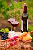 Twee glazen rode wijn met fles, brood, vlees, druif en che Royalty-vrije Stock Fotografie