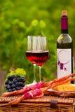 Twee glazen rode wijn met fles, brood, vlees, druif en che Stock Foto