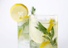 Twee glazen van mojitococktail Royalty-vrije Stock Foto