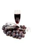 Twee glazen van wijn en wijnstok. Royalty-vrije Stock Afbeelding