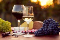 Twee glazen witte en rode wijn Stock Afbeeldingen