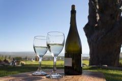 Twee glazen witte wijn Stock Foto