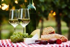 Twee glazen witte wijn Royalty-vrije Stock Afbeeldingen