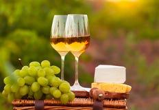 Twee glazen witte wijn, diverse soorten kaas en druiven op Th Royalty-vrije Stock Foto's