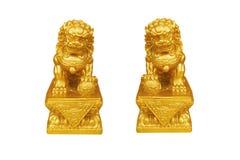 Twee goldren leeuwenbeeld op wit wordt geïsoleerd dat Stock Afbeeldingen
