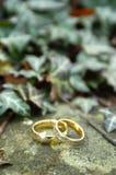 Twee gouden trouwringen stock fotografie