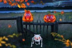 Twee grappige oranje Halloween-pompoenen met gloeiende ogen met boze skelethond op een stormachtige winderige Halloween-nacht stock illustratie