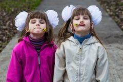 Twee grappige siblings zuster die met elkaar koesteren terwijl gang in park Hebbend pret samen, positieve emoties royalty-vrije stock afbeelding