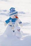 Twee grappige sneeuwmannen met wortelneus. Royalty-vrije Stock Foto's