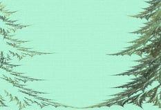 Twee grote bont-bomen op een groene achtergrond Stock Afbeelding