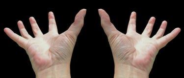 Twee handen Stock Foto