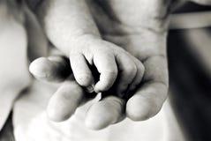 Twee Handen Stock Fotografie