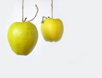 Twee hangende appelen Stock Foto