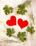Twee harten in het de zomerkader Stock Fotografie