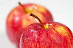 Twee heerlijke appelen Stock Afbeelding