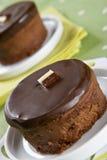 Twee heerlijke eigengemaakte chocoladecakes royalty-vrije stock foto