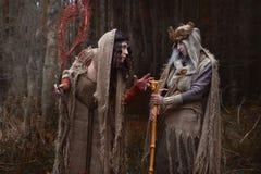 Twee heksen in vodden in bos stock afbeeldingen