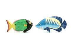 Twee het exotische vissen onder ogen zien Royalty-vrije Stock Afbeeldingen