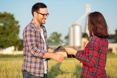 Twee het gelukkige jonge vrouwelijke en mannelijke landbouwers of agronomen schudden dient een tarwegebied in royalty-vrije stock afbeelding