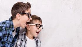 Twee het jonge broers stellen Stock Afbeeldingen