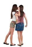 Twee het jonge vrouwenvriend roddelen Royalty-vrije Stock Afbeeldingen