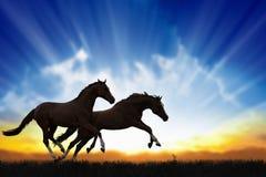 Twee het lopen paarden Royalty-vrije Stock Afbeelding