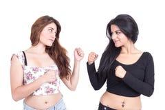 Twee het mooie jonge meisjes stellen Royalty-vrije Stock Afbeeldingen
