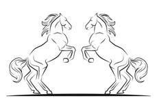 Twee het springen paarden Royalty-vrije Stock Afbeelding
