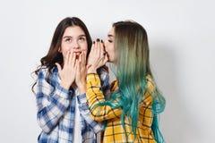 Twee het vrouwelijke vrienden roddelen Één meisje vertelt de geheimen van andere in haar oor stock fotografie