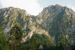 Twee heuvels met gras op rotsen royalty-vrije stock afbeelding