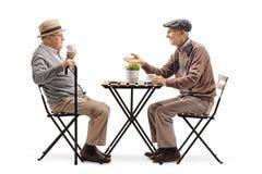 Twee hogere mensen die bij een koffietafel en het spreken zitten royalty-vrije stock fotografie