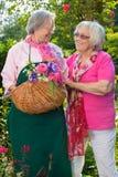 Twee hogere vrouwen die zich in tuin met mand bevinden Stock Foto