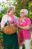 Twee hogere vrouwen met mand die zich in tuin bevinden Royalty-vrije Stock Afbeeldingen