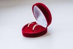 Twee Identieke Mannelijke en Vrouwelijke Ringen in Fluweeldoos Stock Foto's