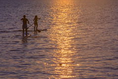 Twee ineengestrengelde paddlesurfers. royalty-vrije stock afbeelding