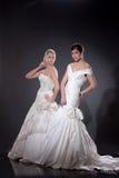 Twee Jonge Bruiden Stock Foto's
