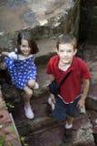 Twee jonge geitjes royalty-vrije stock fotografie