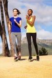 Twee jonge gezonde vrouwen die samen in openlucht aanstoten Stock Afbeeldingen