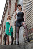 Twee jonge knappe vrouwen Stock Fotografie