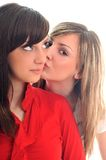 Twee jonge meisjes die op wit worden geïsoleerdn Stock Foto's