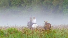 Twee jonge meisjes die paarden berijden gaan in de mist, gaat het derde paard van bruine kleur na hen stock footage