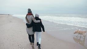 Twee jonge meisjes lopen langs het strand met een hond Omhels het lopen dichtbij de oceaan stock video