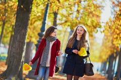 Twee jonge meisjes op een zonnige dalingsdag Royalty-vrije Stock Foto's