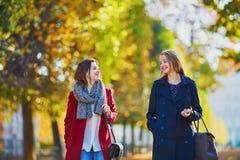 Twee jonge meisjes op een zonnige dalingsdag Stock Afbeeldingen