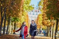 Twee jonge meisjes op een zonnige dalingsdag Royalty-vrije Stock Afbeeldingen