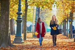 Twee jonge meisjes op een zonnige dalingsdag Royalty-vrije Stock Afbeelding